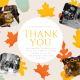 Our Annual Thanksgiving Feast was a Great Success thanks to all the volunteers and items donated.